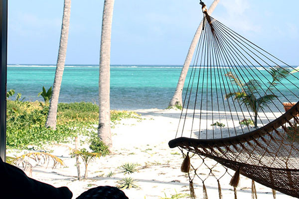 Hammock and Beach View