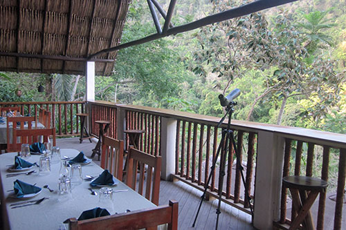 Dining Area has communal open air dining overlooking the Macal River